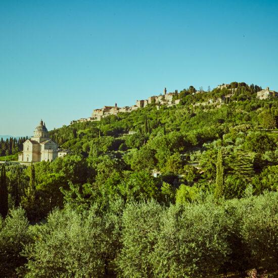 territorio-montepulciano